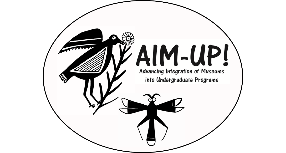 About AIM-UP!
